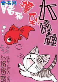 瞎猫撞到大咸鱼